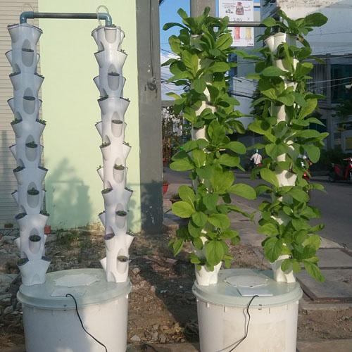 trụ trồng thủy canh